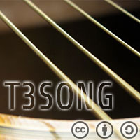 T3SONG